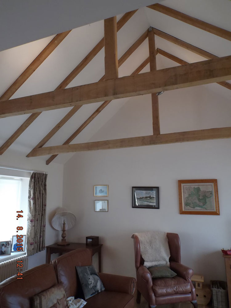 Vaulted ceiling with exposed rafters and ceiling ties